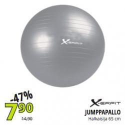 X-erfit Gym Ball 65cm